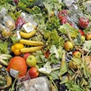 B&M food waste disposal and recycling